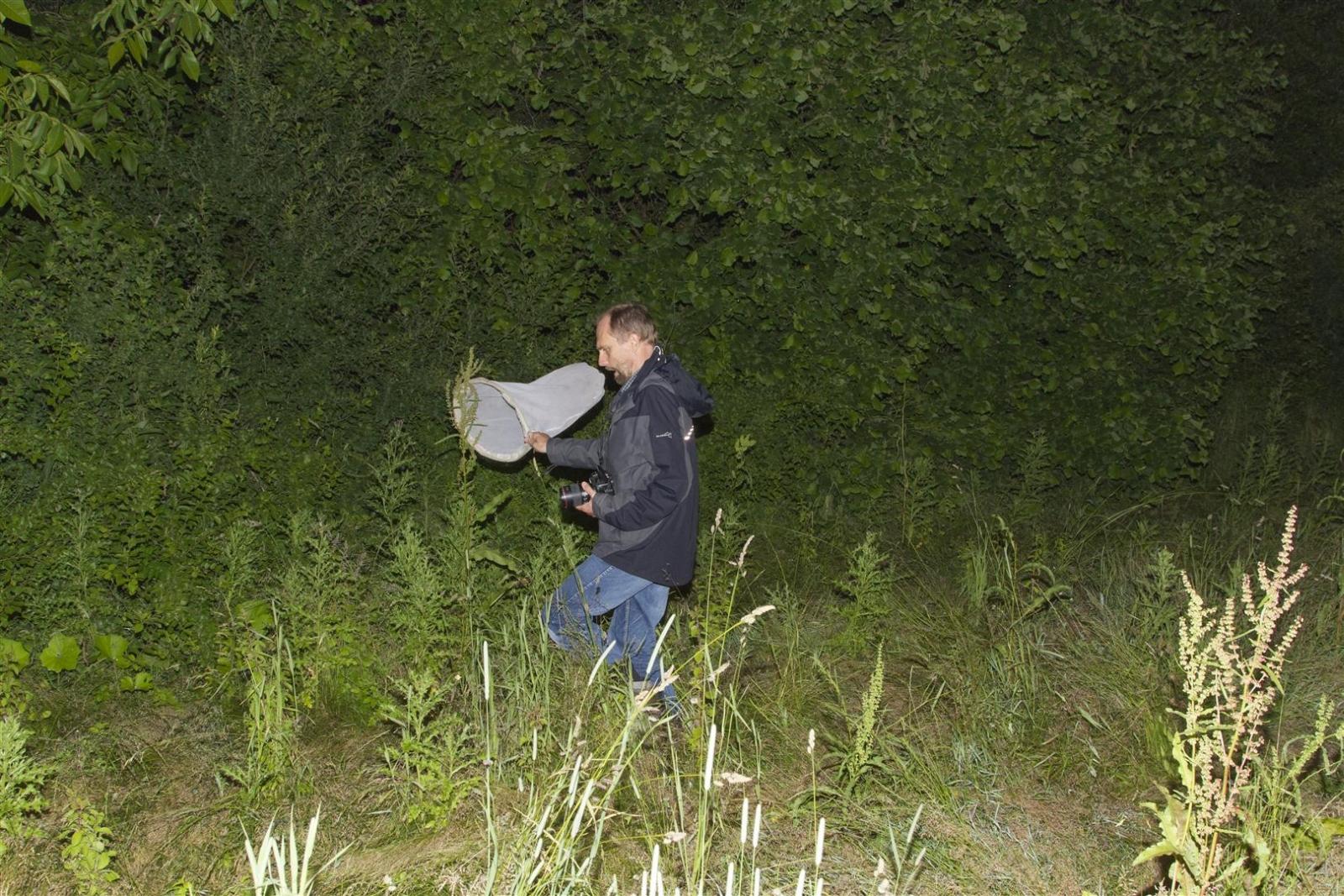 22_nachtvlinder_jagen