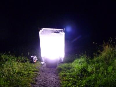 06_Nachtvlinderval