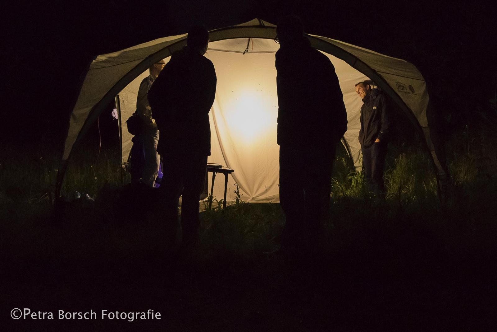 028_Nachtvlinderen