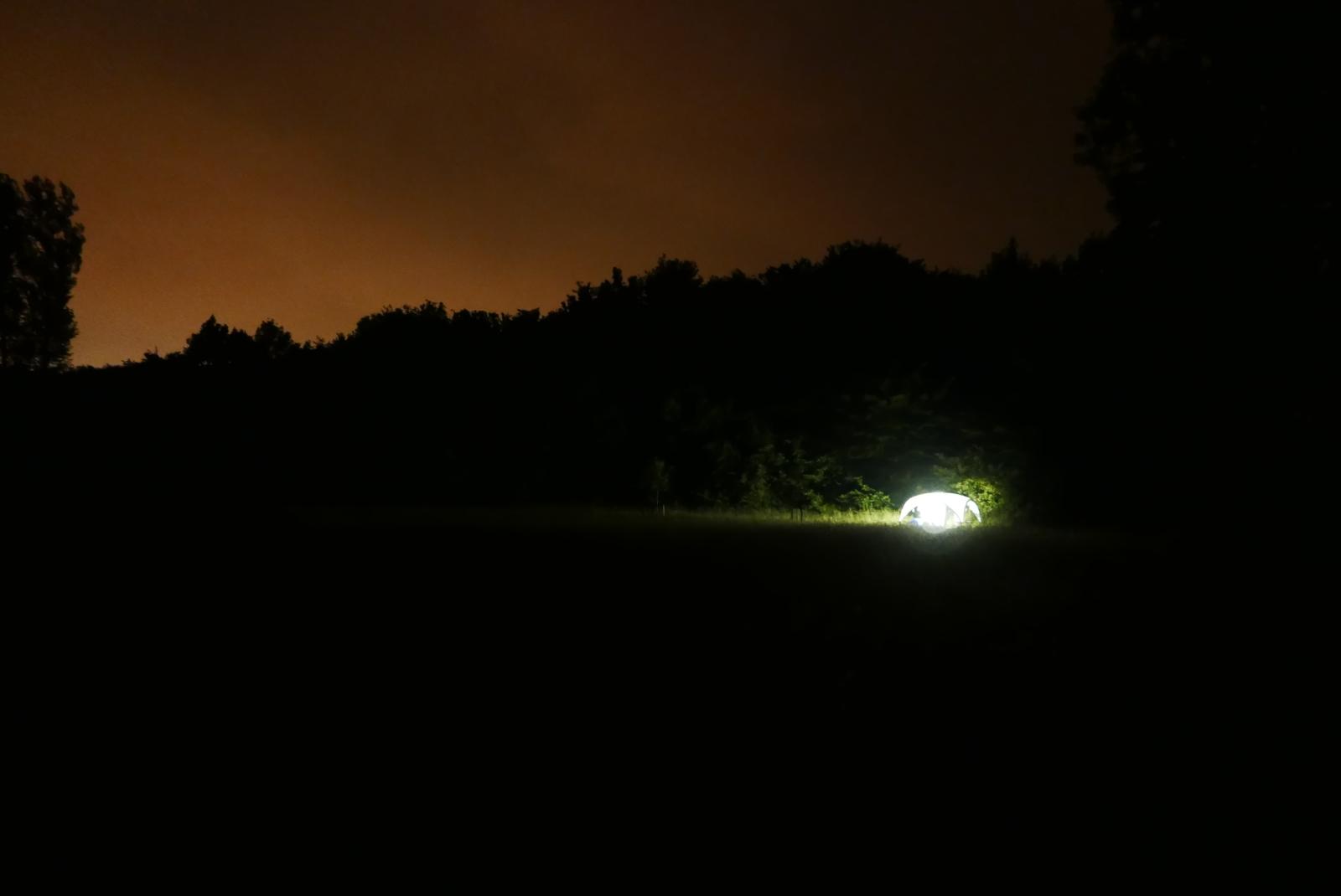 036_Nachtvlinderen