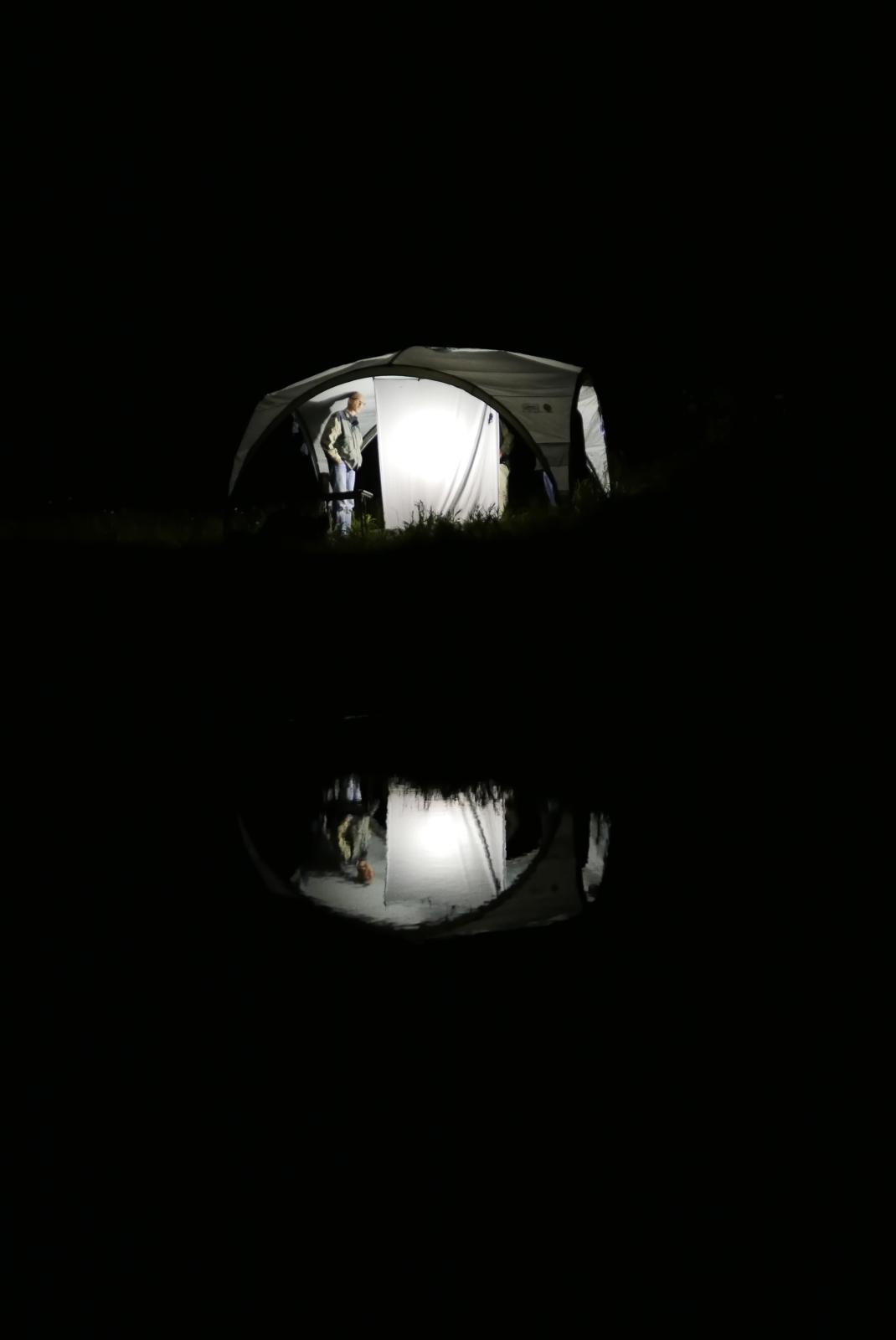 038_Nachtvlinderen
