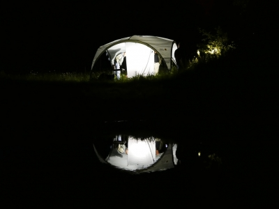 037_Nachtvlinderen