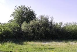 lokatie-5-06_thumb